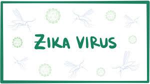 zika-3